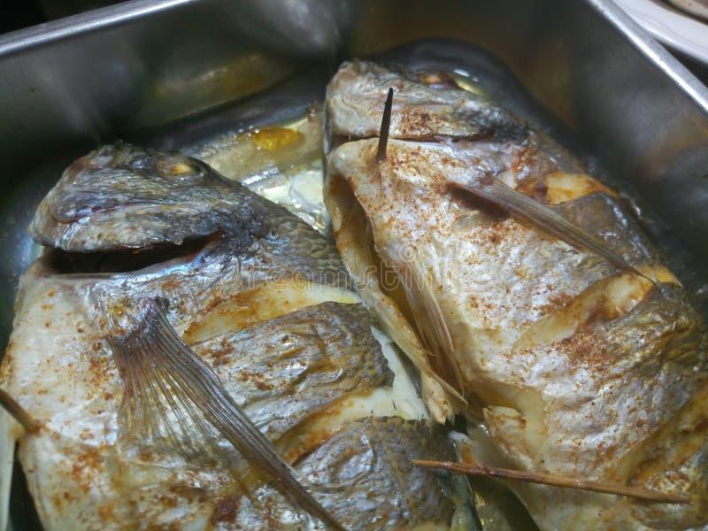 Zakończenie up gotująca i przyprawiająca ryba fotografia stock