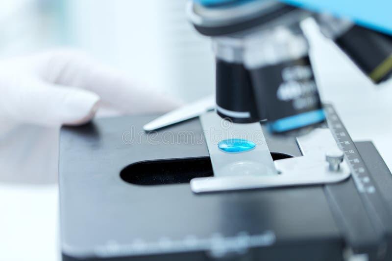Zakończenie up naukowiec ręka z próbną próbką w lab fotografia royalty free