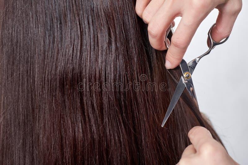 Zakończenie włosiany stylista ciie włosy kobieta z kopii przestrzenią fotografia royalty free