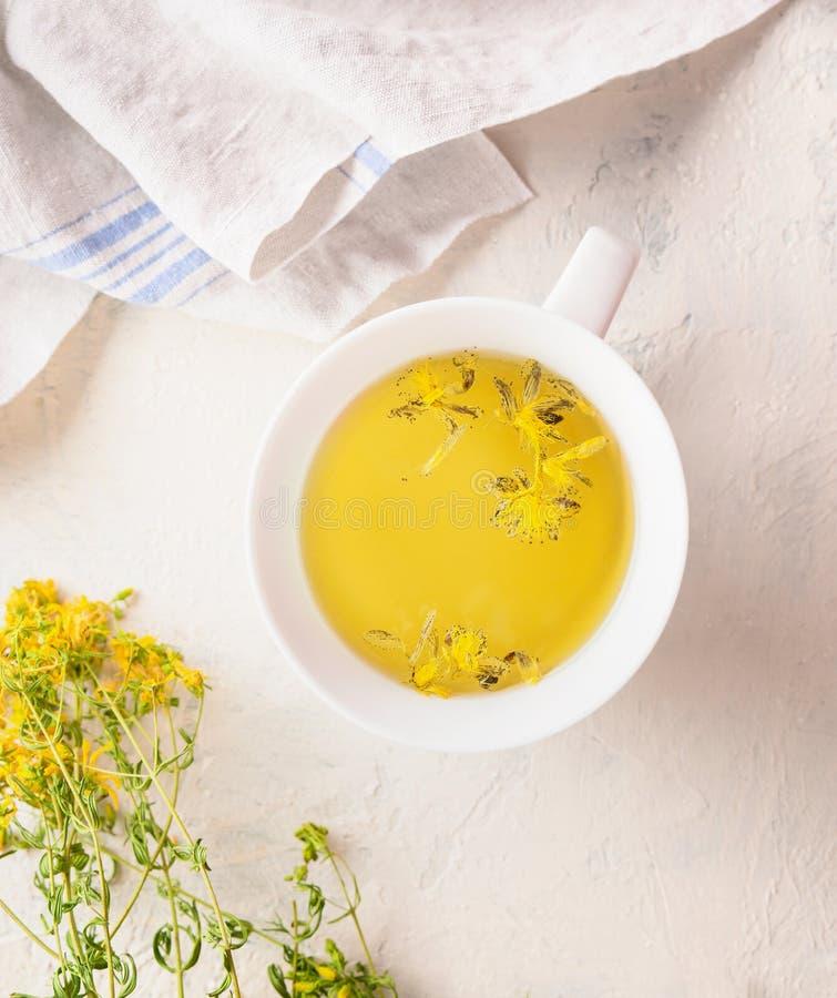 Zakończenie w górę filiżanki z żółtą ziołową herbatą na światło stole z świeżymi ziele i kwiatami Organicznie Tutsan herbata Dzik zdjęcie stock
