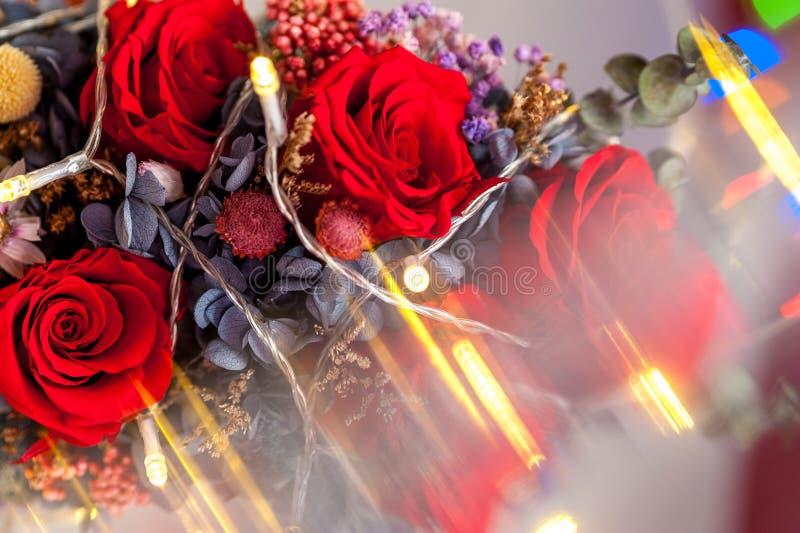 Zakończenie w górę jeden czerwieni róży z żółtą girlandą obraz royalty free