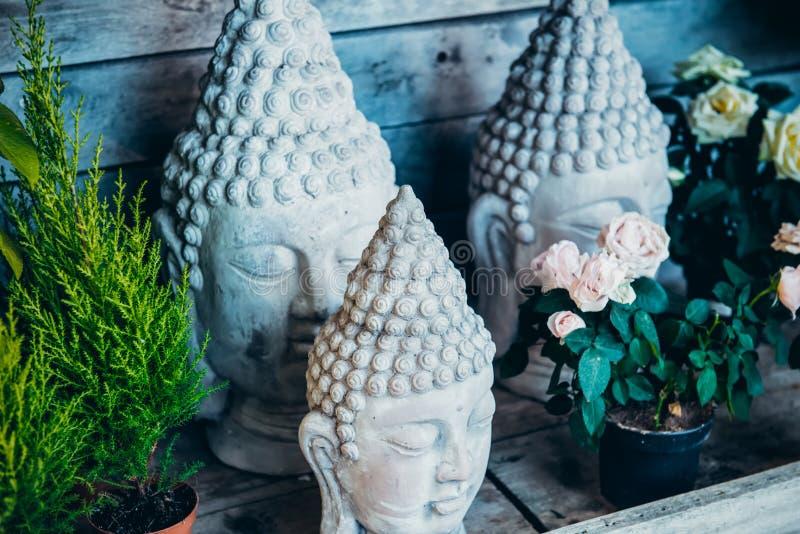 Zakończenie w górę kamienia few Buddha głowy statuy wśród kwiatów w garnkach na drewnianym tle Powierzchowność, Plenerowy Ogrodow obraz stock