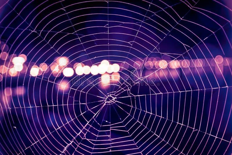 Zakończenie w górę pająk sieci z bokeh i zamazującym światłem obraz stock