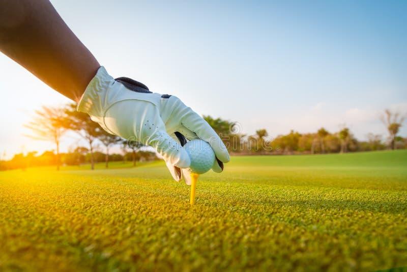 Zakończenie w górę piłki golfowej w golfowej rękawiczki ręce z zieloną trawą zdjęcie royalty free