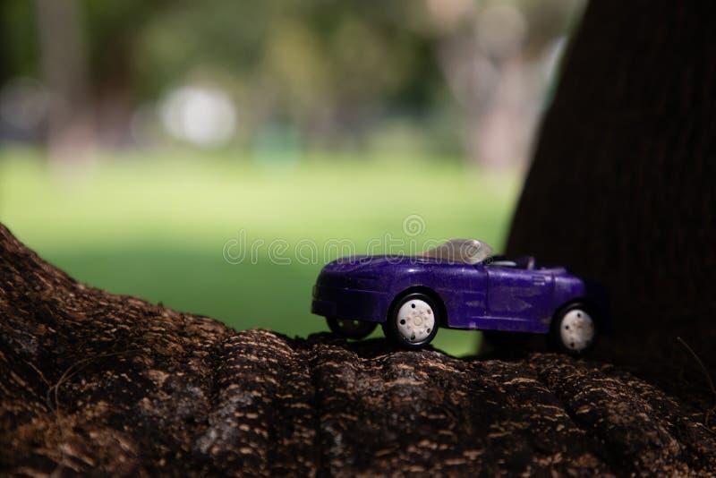 Zakończenie w górę purpurowego zabawkarskiego samochodu nad dużą gałąź drzewo zdjęcia royalty free