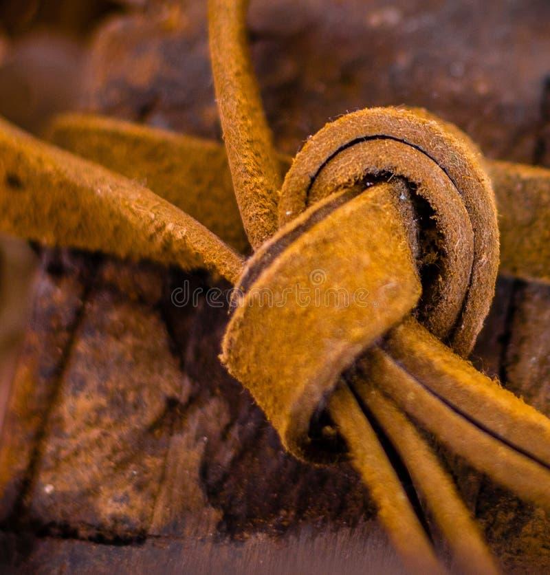 Zakończenie w górę skóra cugli wiązał w kępce Bogaci złoci brązów brzmienia obrazy stock