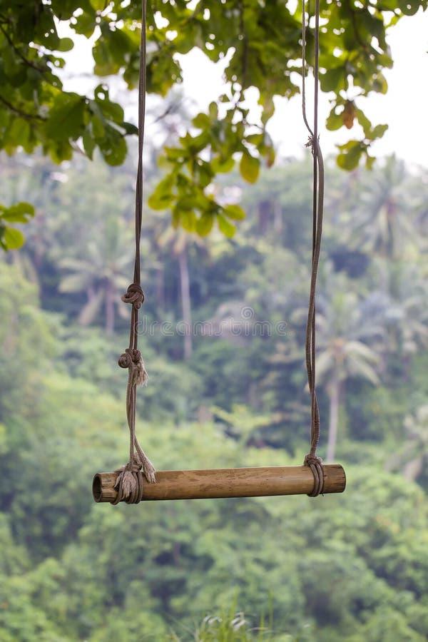 Zakończenie w górę starej arkany i drewnianej huśtawki w dżungla tropikalnym lesie deszczowym tropikalna Bali wyspa Indonezja obraz stock