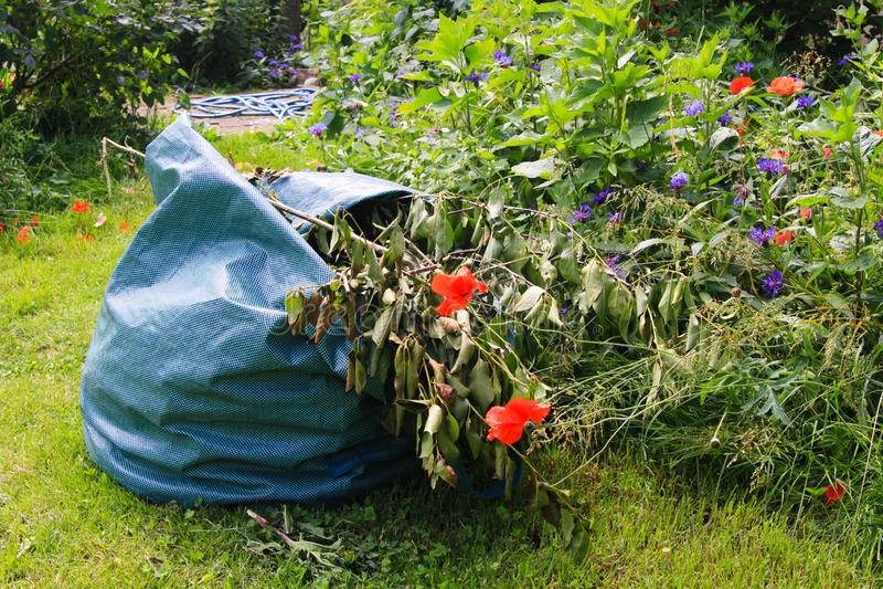 Zakończenie w górę torby z ogródu odpady na zielonej trawie z kwiatami podczas ogrodnictwa zdjęcie stock