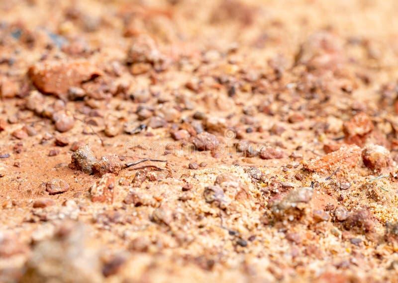 Zakończenie w górę widoku brąz mokra ziemia zawiera kilka kopaliny i ja jest źródłem jedzenie dla wiele dziki życie i insekt w le zdjęcia stock