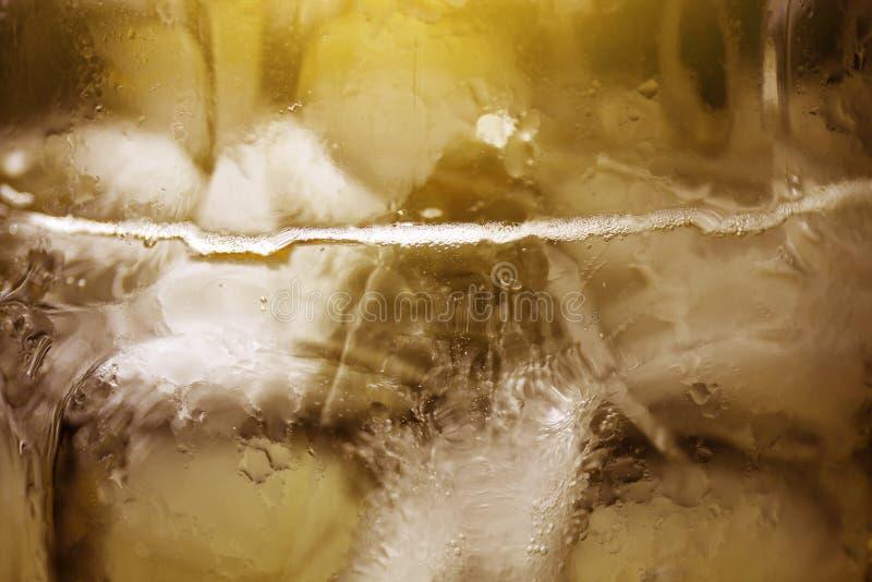 Zakończenie w górę Zimnego piwa w szkle i lodzie, piwo jest napoju alkoholu żółtego złota i brązu kolorem dla chłodno napoju tło  obrazy royalty free