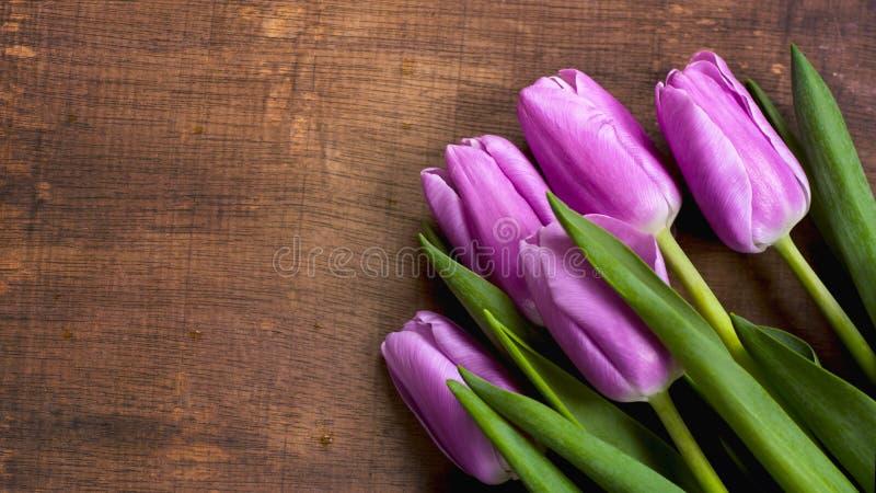 Zakończenie wiązka purpurowy tulipanu tła bukiet lili tulipany zdjęcie royalty free