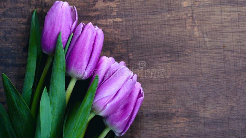 Zakończenie wiązka purpurowy tulipanu tła bukiet lili tulipany zdjęcia stock