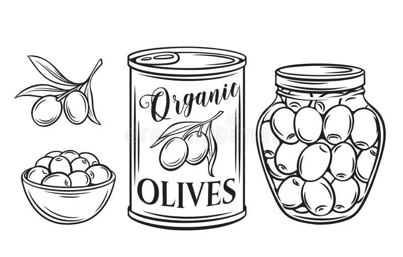 zakonserwowany oliwki ilustracji