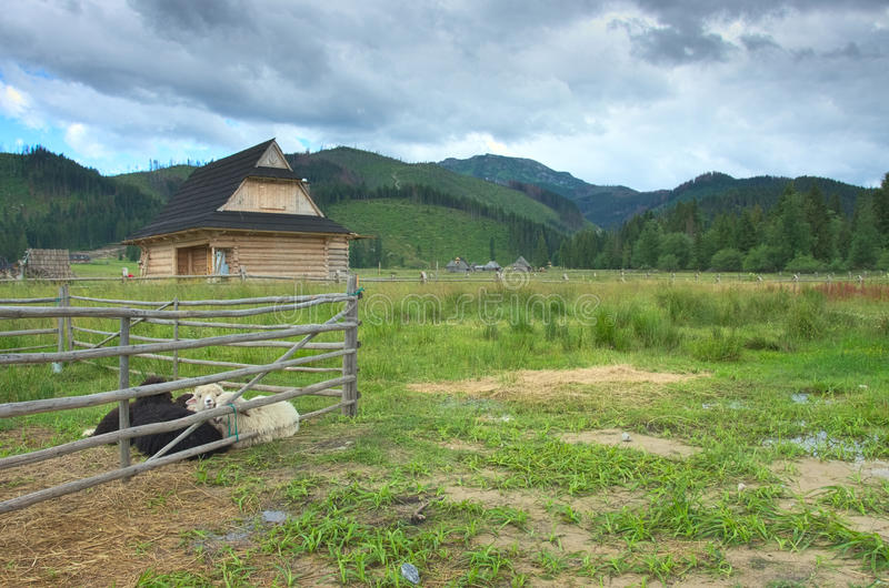 Zakopane, cottage della montagna, fotografia stock libera da diritti