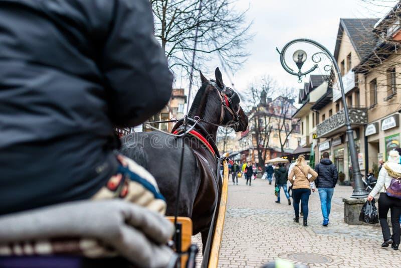 Zakopane, Polonia - 21 de febrero de 2019 Foto de un carro del caballo que monta a través de las calles de la ciudad de Zakopane foto de archivo