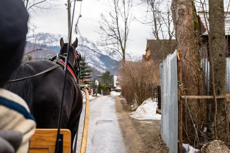 Zakopane, Polonia - 21 de febrero de 2019 Foto de un carro del caballo que monta a través de las calles de la ciudad de Zakopane fotos de archivo