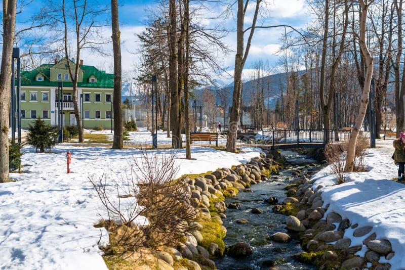 Zakopane, Polonia - 21 de febrero de 2019 Parque en la ciudad cubierta con la nieve con un verde, casa del ladrillo Árboles visib imagenes de archivo