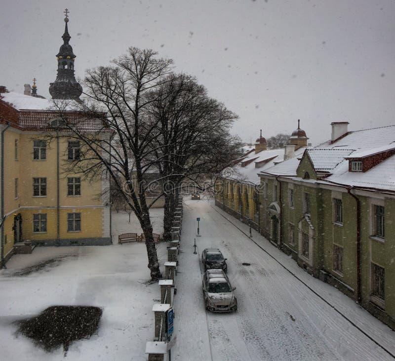 zakrywająca czarodziejskiego lasu domu śniegu bajki zima drewniana tallinn Estonia fotografia royalty free