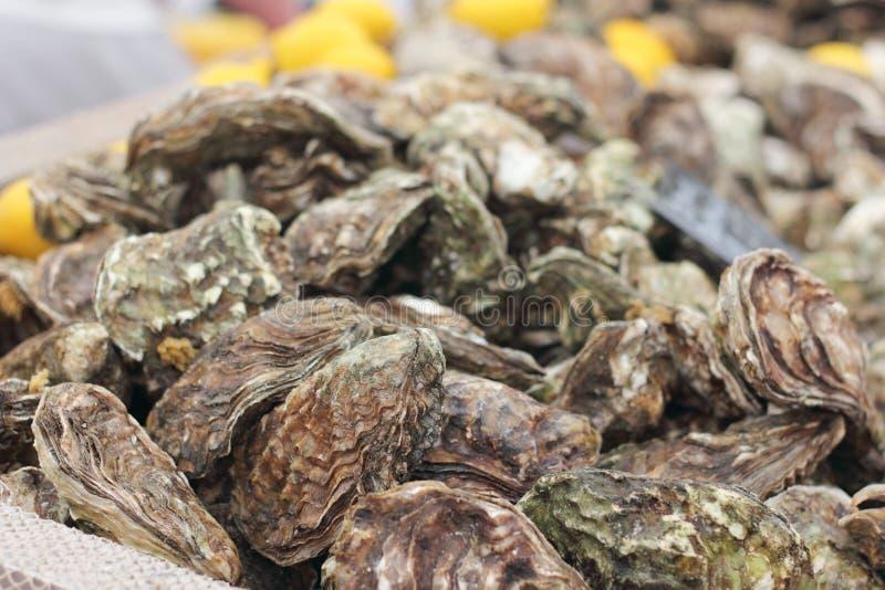 Zakupu owoce morza zdjęcia royalty free