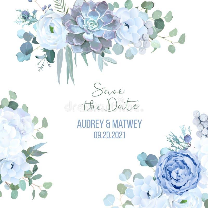 Zakurzona błękit róża, echeveria sukulent, biała hortensja, ranunculu ilustracja wektor