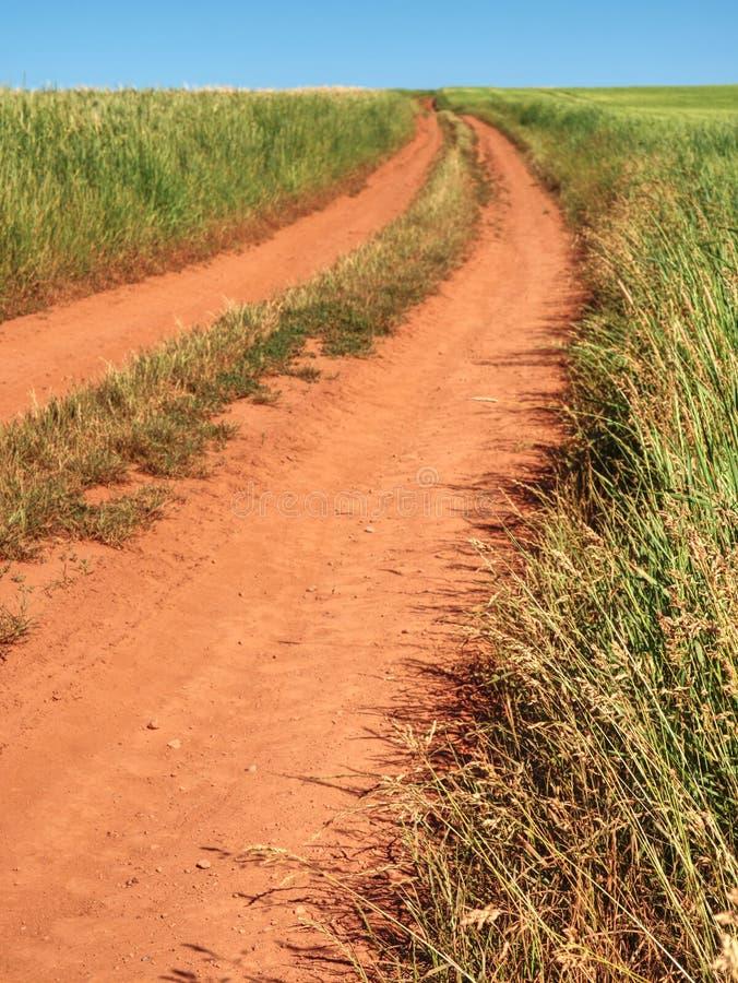 Zakurzona i brudna ciągnikowa droga w pole krajobrazie Spos?b mi?dzy polami fotografia royalty free