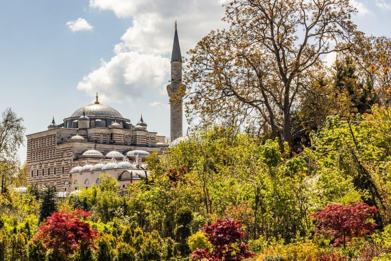 Zal mustafa pasa清真寺和植物园eyup的,伊斯坦布尔 图库摄影