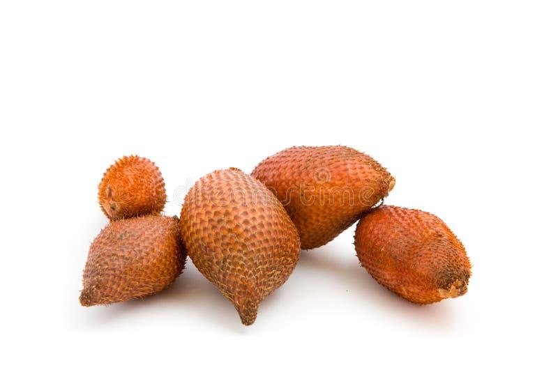 zalacca плодоовощ тропическое стоковые фотографии rf