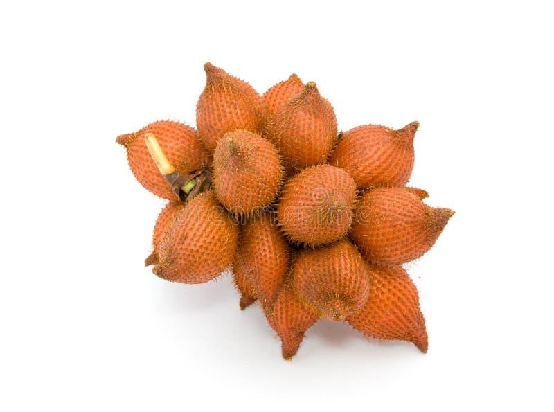 zalacca плодоовощ тропическое стоковое изображение rf