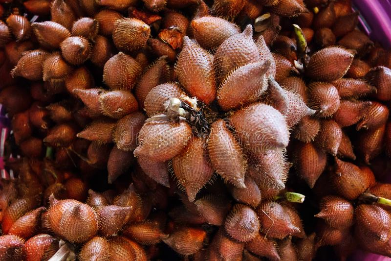 Zalacca edulis или тип wallichiana salacca тропических свежих фруктов в корзине стоковые фотографии rf