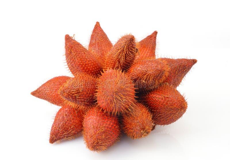 Zalacca eller salakfrukt arkivfoton