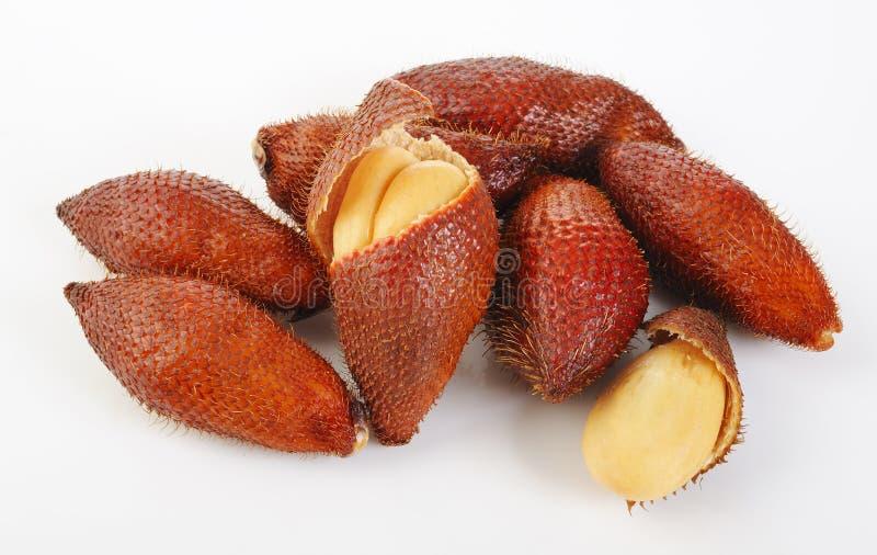 Zalacca frukt royaltyfri bild