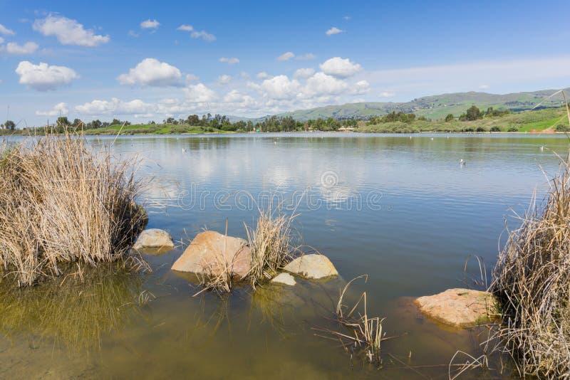 Zalewająca linia brzegowa w Cunningham jeziorze, San Jose, południowy San Francisco zatoki teren, Kalifornia fotografia royalty free