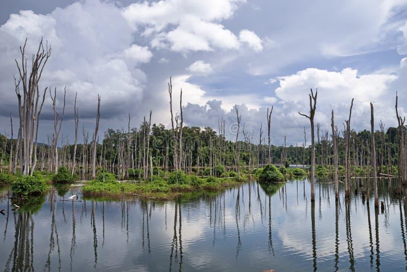 Zalewający las Nam Theun 2 rezerwuar na Nakai plateau w Laos zdjęcia stock