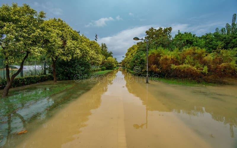 Zalewający stary Turia brzeg rzeki po ulewnego deszczu zdjęcie stock