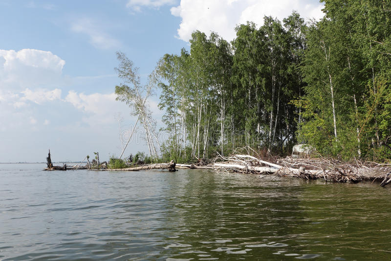 Zalewający wybrzeże wyspa przy Ob rzeką, Syberia zdjęcie royalty free