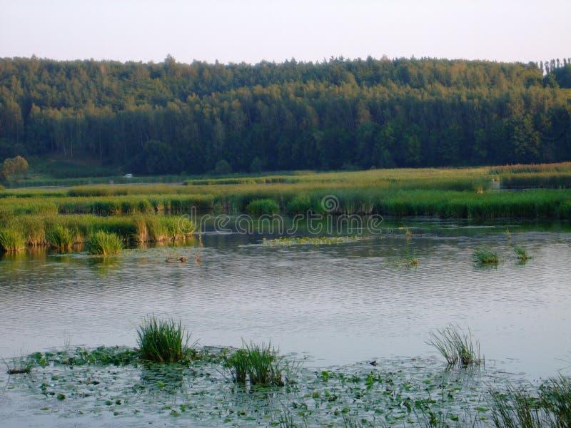 Zaliv.Reka southern Bug Vinnytsia region .2013year stock images