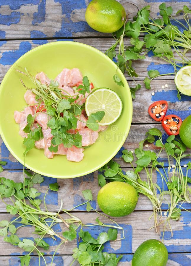 Ceviche royalty-vrije stock afbeelding