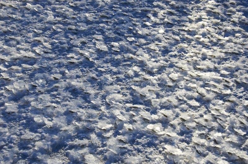 Zamarznięty śnieg obraz stock