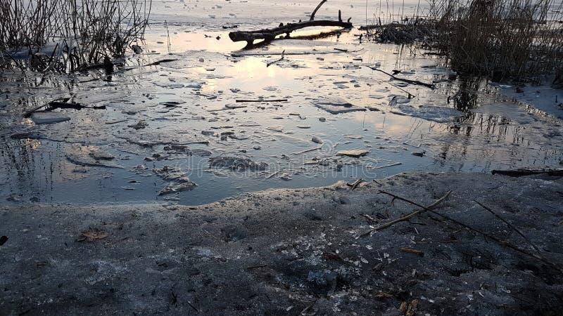 Zamarznięty brzeg jeziora zdjęcie stock