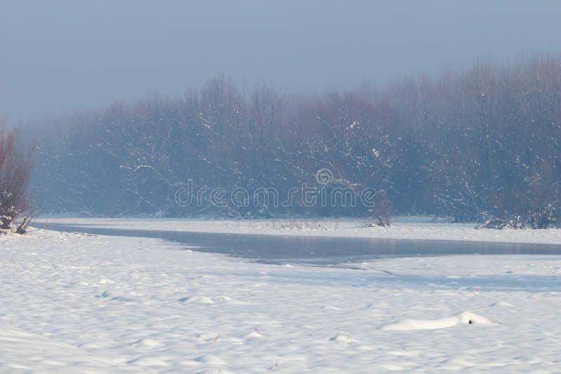 Zamarznięty jezioro w lasowym zimy jeziorze pod śniegiem zdjęcia royalty free
