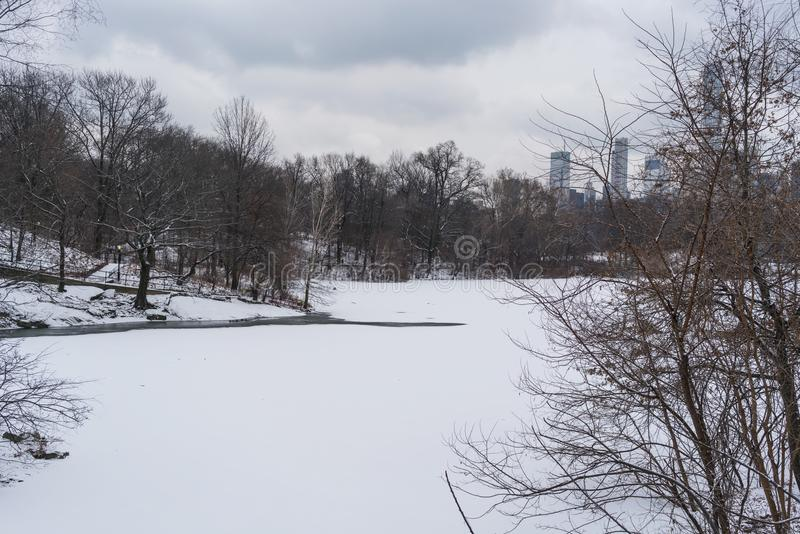 Zamarznięty jezioro w nowym York, centrala park obraz stock