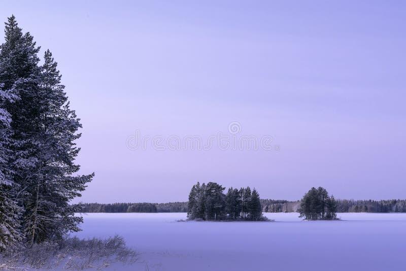 Zamarznięty jezioro w zimie w śniegu zdjęcie royalty free