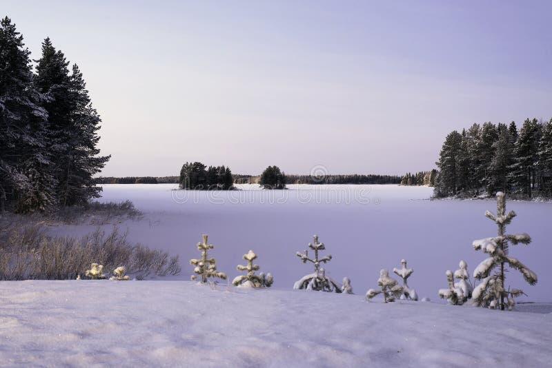 Zamarznięty jezioro w zimie w śniegu obrazy stock
