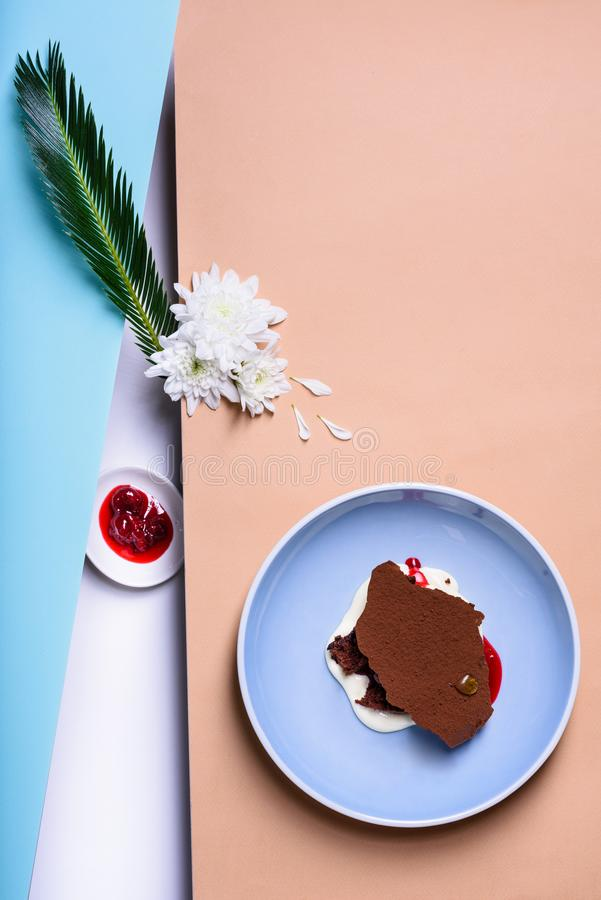 Zamarznięty jogurtu lub miękka część lody deser, waniliowy lody z czekoladowym punktem zdjęcie royalty free