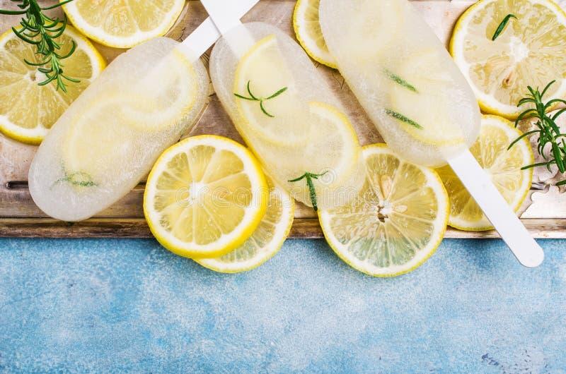 Zamarznięty owoc lód zdjęcie stock