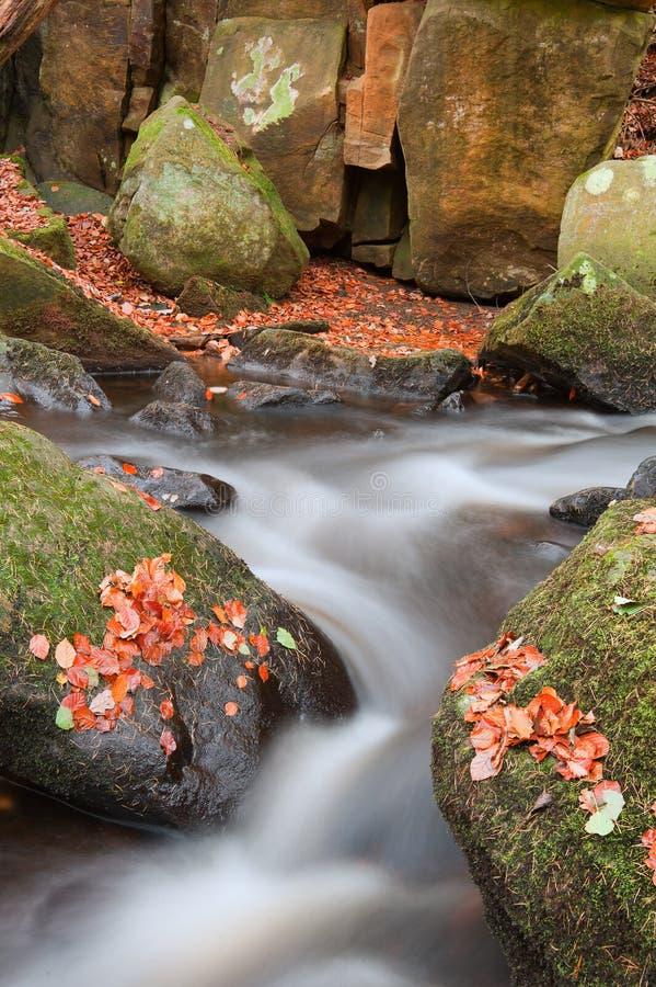 Zamazany wodny szczegół z skały nad jesieni liśćmi w Padley Gorg fotografia royalty free
