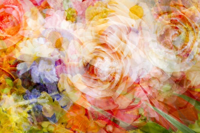 Zamazany dwoisty ujawnienie kwiaty obraz stock