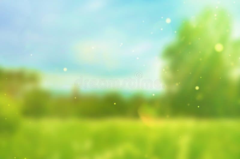 Zamazany lata tło Pogodny krajobraz wektor ilustracji
