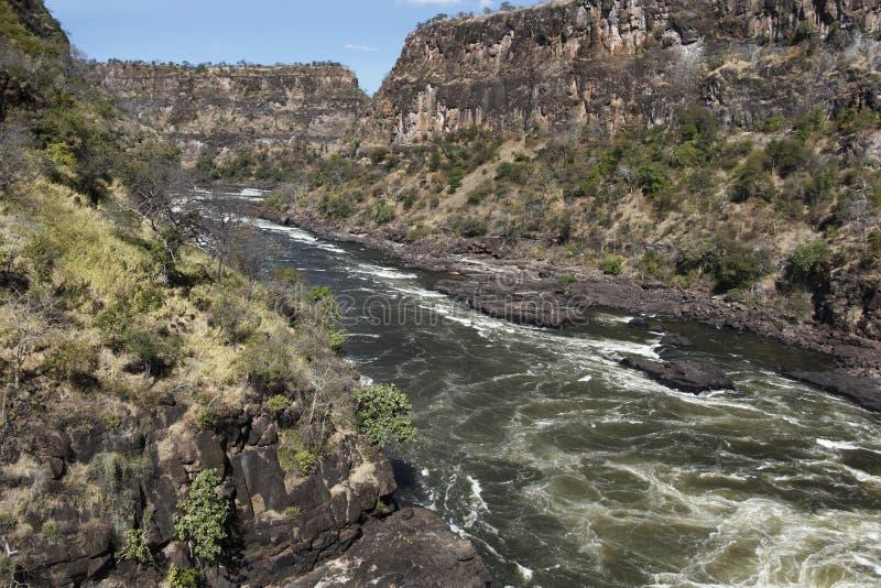 Zambezi-Fluss lizenzfreies stockbild