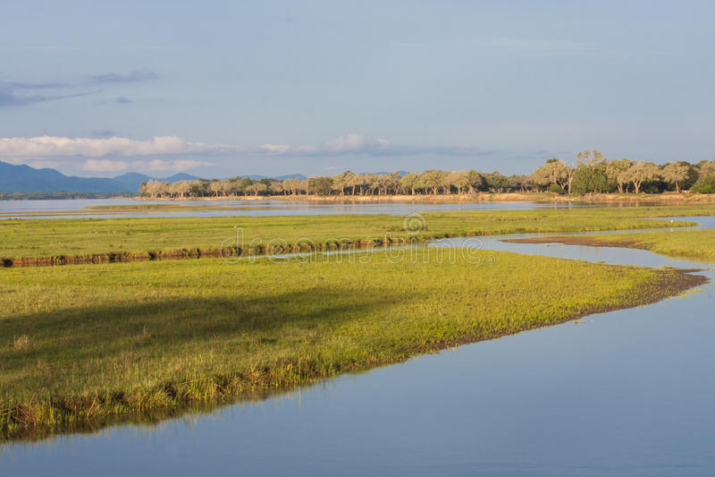 Zambezi rivier stock afbeeldingen